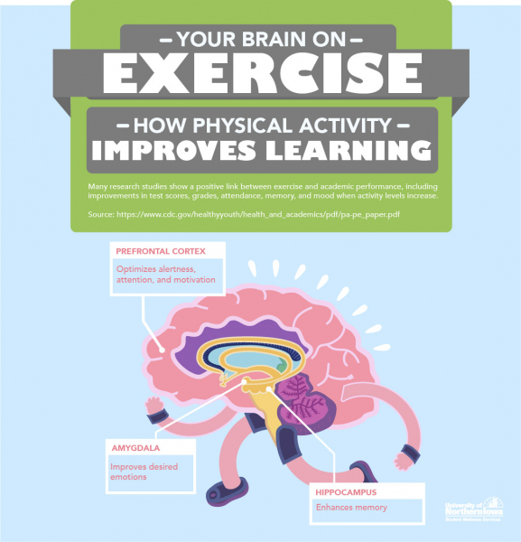 Your Brain on Exercise: How Physical Activity Impact Learning